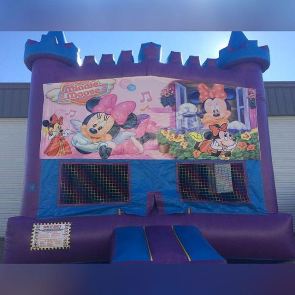 Minnie Mouse Themed Moonwalk